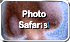 See Photo Safari Images